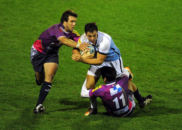 sale sharks - la vila